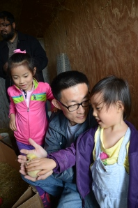 Wang Zhen, his daughter, and the wonder of baby chicks