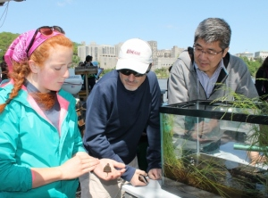 A Clearwater educator shows scholars Gian Luigi Rosso (Italy) and Sean Lei (Taiwan) a baby snapping turtle, while discussing marine life in the Hudson River