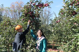 Albanian scholar Evetla Londo (left) and Pakistani scholar Shagufta Akhtar experience apple picking for the first time!