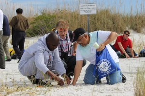 Scholars plant sea oats with Tampa Bay Watch.