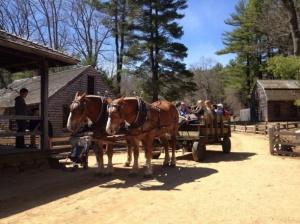 Visiting Scholars enjoy a hay ride.